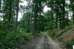 rekreačný pozemok - Jabloňovce - Fotografia 5