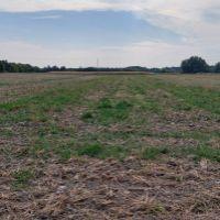 Orná pôda, Jelka, 10891 m²