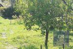 záhradná chata - Dolný Kubín - Fotografia 3