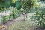 záhrada - Trnava - Fotografia 3