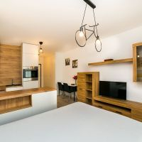 1 izbový byt, Bratislava-Nové Mesto, 29.50 m², Novostavba