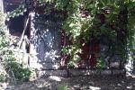 Rodinný dom - Ipeľské Úľany - Fotografia 23