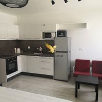 1 izbový byt, Banská Bystrica, 25 m², Novostavba