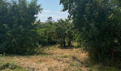 Na predaj pozemok v obci Petrova Ves, okr. Skalica