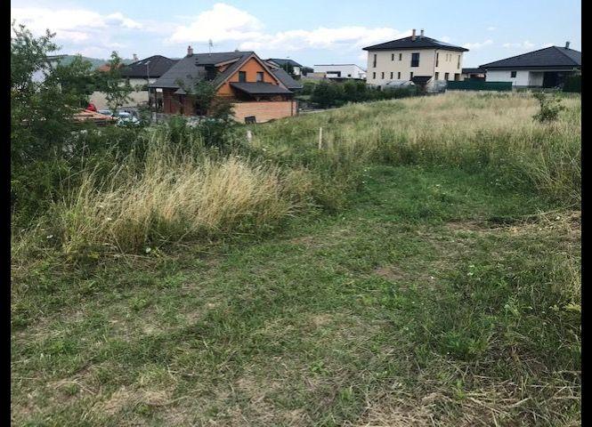 trvalý trávnatý porast - Banská Bystrica - Fotografia 1