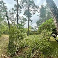 Rekreačný pozemok, Láb, 5122 m²