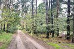 rekreačný pozemok - Láb - Fotografia 10