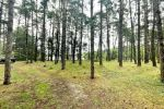 rekreačný pozemok - Láb - Fotografia 5
