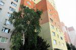 1 izbový byt - Bratislava-Dúbravka - Fotografia 2