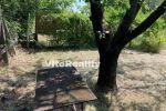 záhrada - Nitra - Fotografia 3