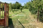 záhrada - Nitra - Fotografia 4