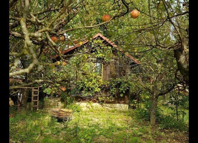 záhradná chata - Považská Bystrica - Fotografia 1