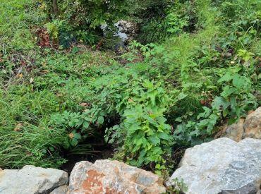 Rekreačný pozemok v obci Zbora 402m2