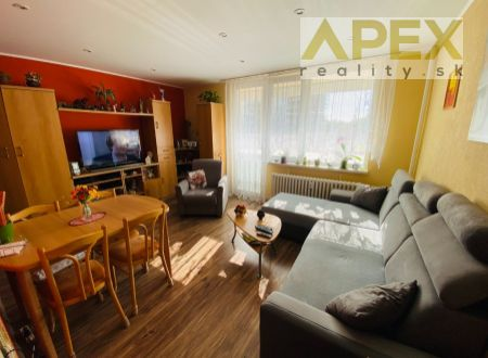Exkluzívne iba u nás v APEX reality 2i. byt s loggiou, 47 m2, M. Bela, 2x komora