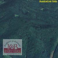 Lesné pozemky, Bzenica, 52000 m²