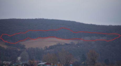 Na predaj les / bukový / do výlučného vlastníctva ,98.972 m2, Vydrná okres Púchov