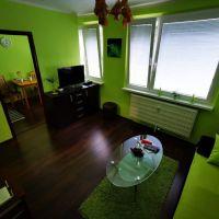 1 izbový byt, Banská Bystrica, 28 m², Kompletná rekonštrukcia