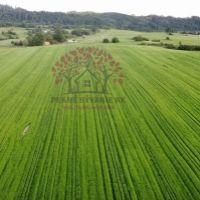 Iný poľnohosp. pozemok, Brezno, 5871 m²