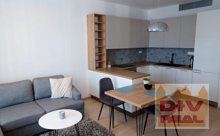 Na prenájom 2 izbový byt v novostavbe SKYPARK (prvá veža A) s parkingom, Bratislava I, Staré mesto, Čulenova