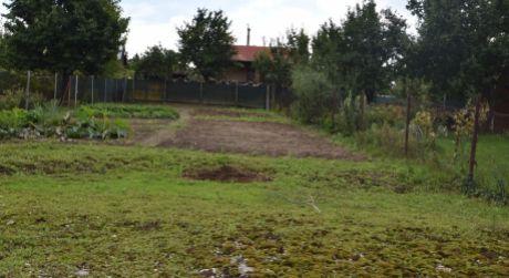 Pekný pozemok - záhrada / 744 m2 na Červenej Veži / k.ú. Banka