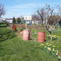 Záhrada, Trnava, 234 m²