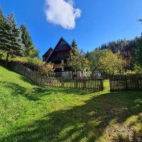 Chata, drevenica, zrub, Mýto pod Ďumbierom, 220 m², Čiastočná rekonštrukcia
