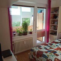 2 izbový byt, Trnava, 1 m², Kompletná rekonštrukcia
