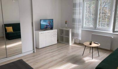 Zrekonštruovaný 1-izbový byt, centrum