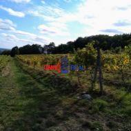Obrábaný vinohrad Viničné - 15 árov