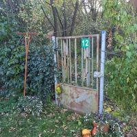 Záhrada, Seňa, 384 m²