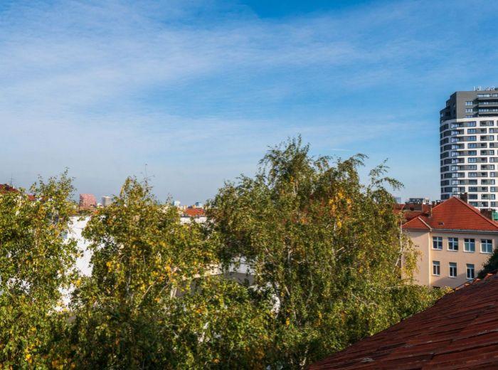 JELENIA, podstrešné podlažie, 282 m2 - TEHLA, HISTORICKÝ, vysoké stropy, KULTÚRNA PAMIATKA