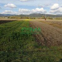 Orná pôda, Predmier, 5645 m²