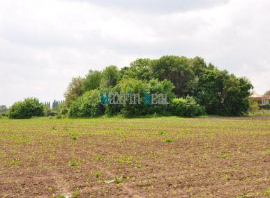 Maxfin Real- predaj rozľahlého pozemku v Ivanke pri Nitre, okres Nitra