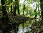 Lesné pozemky a orná pôda v celku