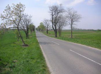 Reality Štefanec /ID-8889/ Dunajská Lužná, pozemok 6.276 m2 orná pôda na predaj, Nové Košariská, cena: 20,-€/m2.