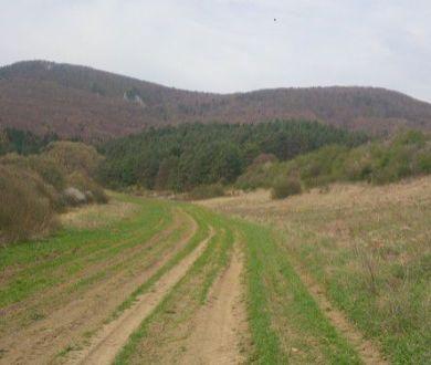 Rekreačný pozemok, Domaniža, okr.PB, 17 000 m2