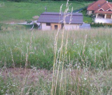 Lukratívny pozemok, Považská Bystrica - Jelšové, 5657 m2