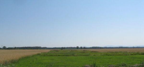 Záhorská Ves-pozemok o výmere 1 ha