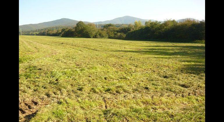 Pozemok - orná pôda- Trenč. Stankovce, časť Malé Stankovce