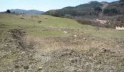 Stavebný pozemok - Žilina-Budatín
