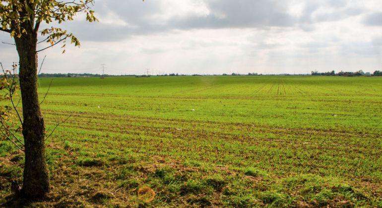 Dobrá investícia do pozemku pri Malinove