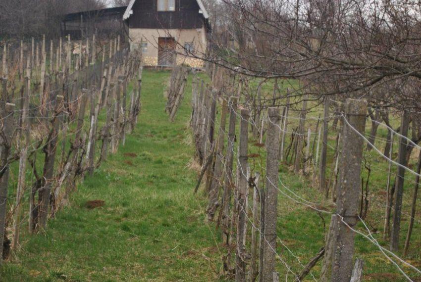 Predaj chata Mýtne Ludany-2