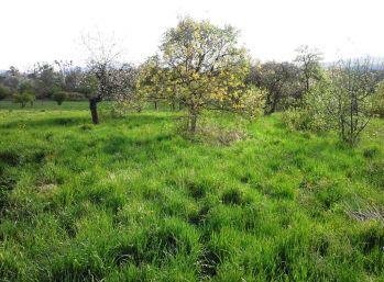 VITOREAL-Pozemok so starším domom  34,5 Km od KE -Slivník