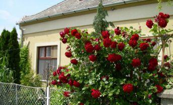 Na predaj vkusne zrekonštruovaný 3 izbový rodinný dom v Klížskej Nemej