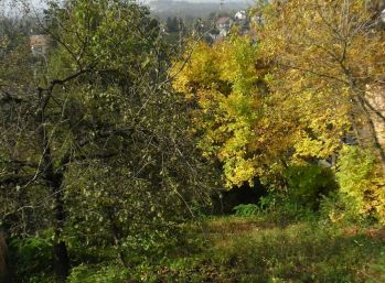 Predáme pozemok pre rodinné domy - Maďarsko - Miskolc - Tapolca