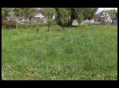 MAXFIN REAL - na predaj pozemok v obci Korytárky, okres Detva.