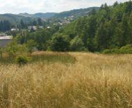 Predaj, slnečný pozemok s pekným výhľadom, Banská Štiavnica