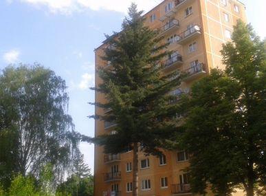MAXFIN REAL -  hľadáme pre klienta 2 - 3 izbový byt vo Zvolene.