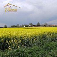 Priemyselný pozemok, Rumanová, 48843 m²