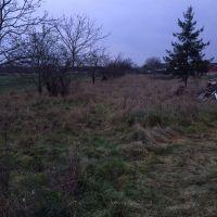 Záhrada, Veľké Orvište, 2686 m²